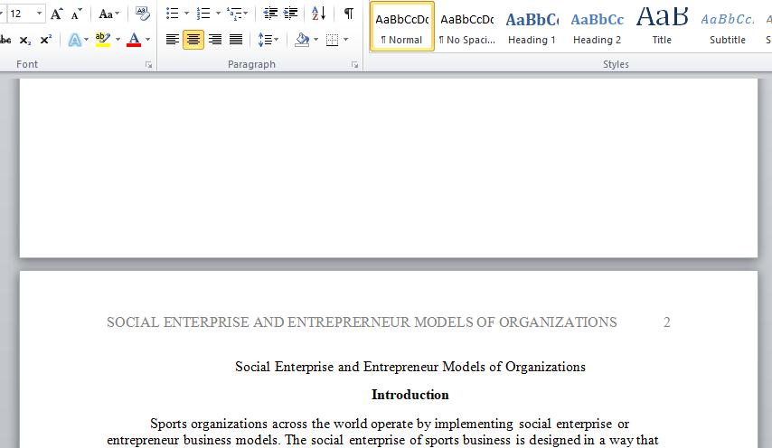 social enterprise and entrepreneur models of organizations