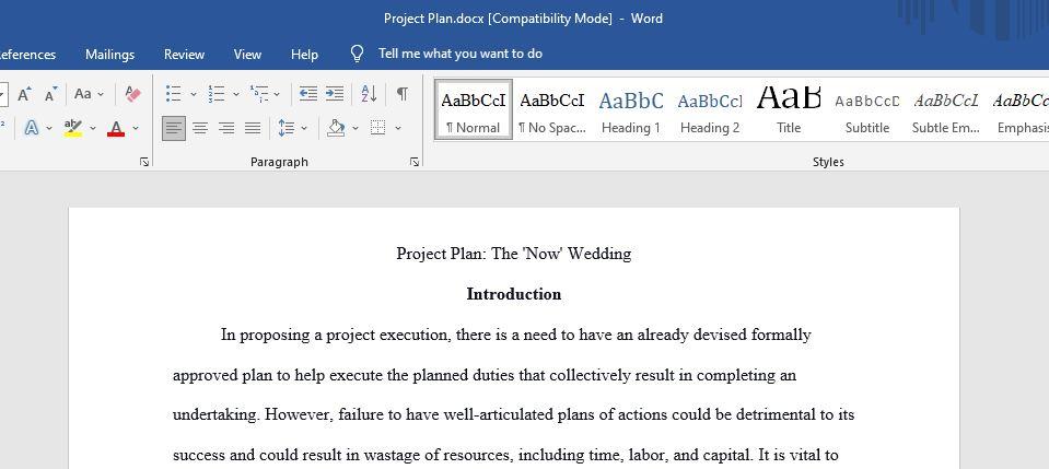 Project Plan Essay